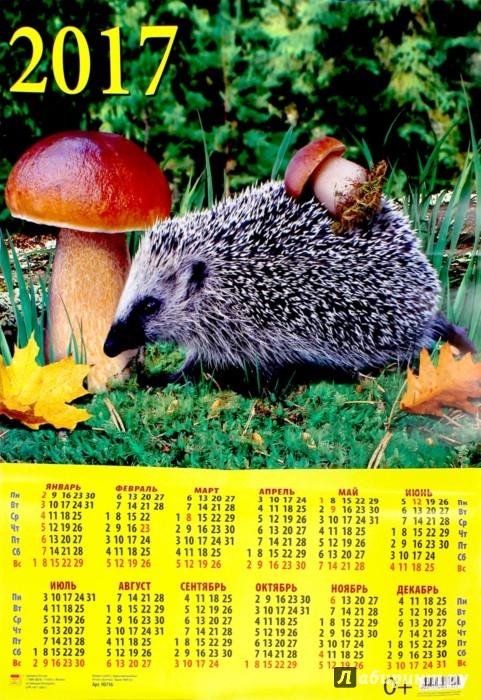 Календарь грибов 2017