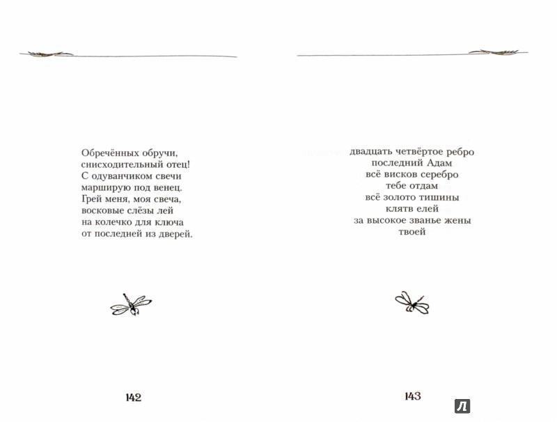 Иллюстрация 1 из 8 для Нежней не бывает - Вера Павлова | Лабиринт - книги. Источник: Лабиринт