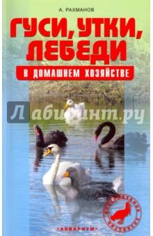 Гуси, утки, лебеди в домашнем хозяйстве. Содержание и разведение