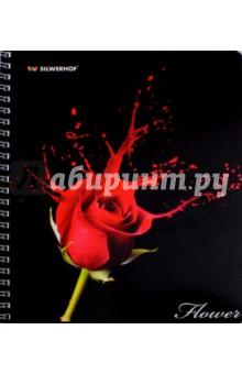 "Тетрадь 80 листов, клетка, гребень ""FLOWER COLOUR"", 4 вида (811454-75) Silwerhof"