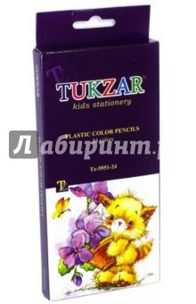 ��������� ������� ����������� (24 �����) (TZ 5951-24) TUKZAR