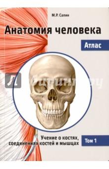 Анатомия человека. Атлас. В 3-х томах. Том 1. Учение о костях, соединениях костей и мышцахАнатомия и физиология<br>Атлас Анатомия человека состоит из трех томов. Первый том посвящен анатомии опорно-двигательного аппарата: костей скелета, соединений костей и скелетных мышц; второй - анатомии внутренних органов (пищеварительной, дыхательной, мочевыделительной и половой систем), иммунной и лимфатической систем, эндокринных органов, сердечно-сосудистой системы. Третий том охватывает анатомию центральной и периферической частей нервной системы и органов чувств.<br>Удобный карманный формат, лаконичный текст и наглядные иллюстрации делают учебное пособие незаменимым спутником при изучении анатомии человека. Материал Атласа полностью соответствует образовательной программе для высшего профессионального образования.<br>Для студентов медицинских вузов и факультетов университетов.<br>2-е издание, переработанное.<br>