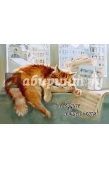 Магнит Не будите спящего кота Речь
