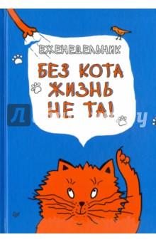 Еженедельник. Без кота жизнь не та! Питер