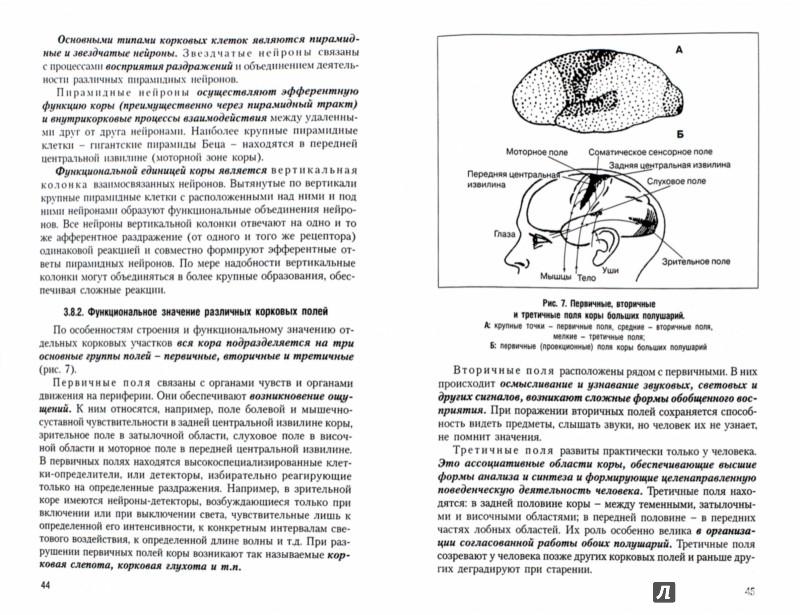 free Наземные моллюски (Gastropoda, Pulmonata, Geophila) Северного и