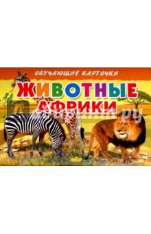 Карточки. Животные Африки