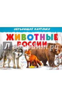 Карточки. Животные России