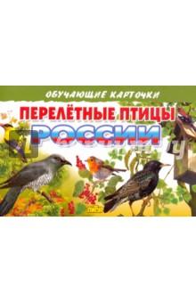 """Карточки """"Перелетные птицы России"""""""