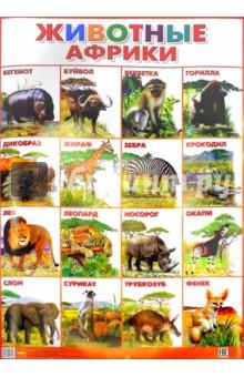 "Плакат ""Животные Африки"" (550х770)"