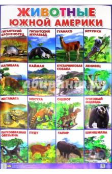"""Плакат """"Животные Южной Америки"""" (550х770)"""