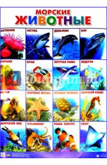 "Плакат ""Морские животные"" (555х774)"