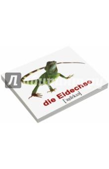 Комплект карточек Мини-20 Wildtiere / Дикие животные (немецкий язык)Другие ин.языки для детей<br>Набор содержит 20 двухсторонних карточек с подписями на русском и немецком языках с транскрипцией. В набор вошли: 1. Ёж - der Igel 2. Кит - der Wal 3. Лев - der Lowe 4. Заяц - der Hase 5. Волк - der Wolf 6. Акула - der Hai 7. Тигр - der Tiger 8. Медведь - der Bar 9. Птица - der Vogel 10. Олень - der Hirsch 11. Лисица - der Fuchs 12. Слон - der Elefant 13. Обезьяна - der Affe 14. Змея - die Schlange 15. Дельфин - der Delfin 16. Лягушка - der Frosch 17. Ящерица - die Eidechse 18. Крокодил - das Krokodil 19. Белка - das Eichhornchen 20. Бабочка - der Schmetterling.<br>Для детей от 6 месяцев.<br>