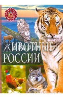 Животные РоссииЖивотный и растительный мир<br>Отправляйся вместе с нами в увлекательное путешествие по бескрайним просторам нашей Родины! Животный мир России богат и разнообразен. На территории нашей страны водятся удивительные и не похожие друг на друга звери: морж и тигр, медведь и лось, рысь и серна. В лесу можно встретить пушистую белку и грозного волка, заслушаться трелями соловья, а в степи увидеть забавного ёжика, рыжую лисицу и красавца фазана, услышать пение жаворонка. Добро пожаловать в удивительный мир животных России!<br>