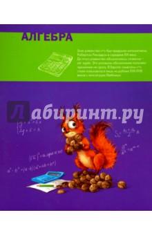 "Тетрадь предметная ""АЛГЕБРА, ЦВЕТНАЯ"" (44320)"