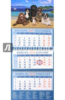 Календарь квартальный на 2018 год Год собаки. Чихуахуа с друзьями на берегу моря (14803)Квартальные календари<br>Календарь на 2018 год, настенный, квартальный с пиколло и курсором для выделения текущей даты.<br>Бумага офсетная<br>Обложка глянцевая.<br>Крепление: спираль.<br>Формат: 320х780 мм.<br>Сделано в России.<br>