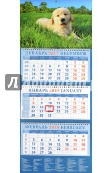 Календарь квартальный на 2018 год Год собаки. Щенок на траве (14815)Квартальные календари<br>Календарь на 2018 год, настенный, квартальный с пиколло и курсором для выделения текущей даты.<br>Бумага офсетная<br>Обложка глянцевая.<br>Крепление: спираль.<br>Формат: 320х780 мм.<br>Сделано в России.<br>