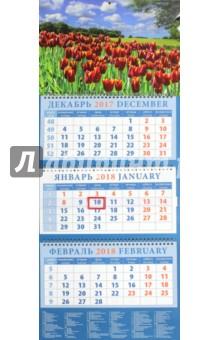 Календарь квартальный на 2018 год Пейзаж с тюльпанами (14852)Квартальные календари<br>Календарь на 2018 год, настенный, квартальный с пиколло и курсором для выделения текущей даты.<br>Бумага офсетная<br>Обложка глянцевая.<br>Крепление: спираль.<br>Формат: 320х780 мм.<br>Сделано в России.<br>