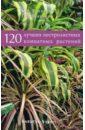 120 лучших пестролистных комнатных растений