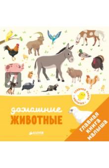 Главная книга малыша. Домашние животныеЗнакомство с миром вокруг нас<br>Возраст 1+<br>3 фишки:<br>- Любимая игра Найди и покажи для развития внимания<br>- Для родителей, которые уделяют особое внимание раннему развитию <br>- Знакомимся с животными<br><br>Красочные иллюстрации с крупными элементами, простой текст, интересные задания - все для того, чтобы малыш учился с удовольствием. Рассматривайте вместе картинки, знакомьте ребенка с окружающим миром. <br><br>Эта книжка красочная, животные в ней нарисованы крупно, картинки яркие и качественные. Малыш может открыть эту книжку и увидеть на каждом развороте новое животное (а может быть даже знакомое!) - утенка, кота, немецкую овчарку, кролика и овцу, а еще увлекательное задание, где ребенку нужно будет отыскать всех животных.<br>Книга послужит прекрасным развивающим пособием, ведь именно в игре дети осваивают основные для этого периода навыки - внимательность, воображение и память. А кроме того, удобный небольшой формат позволит вам взять книгу на прогулку или в путешествие.<br><br>Лайфхак для родителей <br>Сначала просто рассматривайте картинки и запоминайте новые слова. Затем, когда малыш начнёт говорить, обсудите с ним домашних животных. Рассматривайте и читайте книги вместе с ребенком, развивая его воображение, словарный запас и мелкую моторику. Так вы поможете малышу лучше усвоить представления о животных и окружающем мире, с которыми он знакомится позже, уже в детском саду. <br><br>Что развиваем?<br>- Речь<br>- Память <br>- Внимание <br>- Любознательность<br>- Пространственное мышление<br><br>Для чтения взрослыми детям.<br>