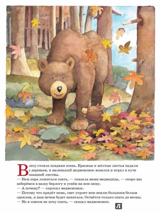ложись спать медвежонок читать если видите