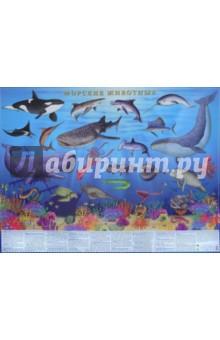 Морские животные. Настольное изданиеНастольное издание с морскими животными.<br>Цифры и факты.<br>