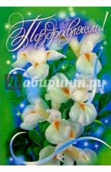 25313/Поздравляем/открытка-вырубка двойная