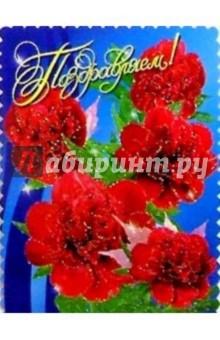 25325/Поздравляем/открытка вырубка двойная