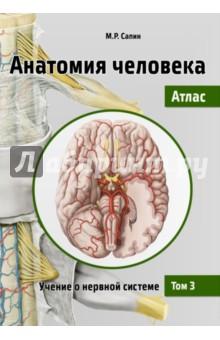 Анатомия человека. Атлас. Учебное пособие. В 3-х томах. Том 3. Учение о нервной системеАнатомия и физиология<br>Атлас Анатомия человека состоит из трех томов. Первый том посвящен анатомии опорно-двигательного аппарата: костей скелета, соединений костей и скелетных мышц; второй - анатомии внутренних органов (пищеварительной, дыхательной, мочевыделительной и половой систем), иммунной и лимфатической систем, эндокринных органов, сердечно-сосудистой системы. Третий том охватывает анатомию центральной и периферической частей нервной системы и органов чувств.<br>Удобный карманный формат, лаконичный текст и наглядные иллюстрации делают учебное пособие незаменимым спутником при изучении анатомии человека. Материал Атласа полностью соответствует образовательной программе для высшего профессионального образования.<br>Для студентов медицинских вузов и медицинских факультетов университетов.<br>2-е издание, переработанное.<br>