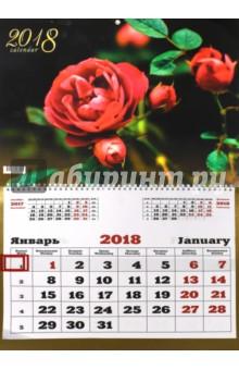 Календарь на 2018 год Цветы. Изысканная роза (настенный, одноблочный) (ККОБ1806)Настенные календари<br>Большой календарь на 2018 год, настенный, одноблочный, с курсором для выделения текущей даты.<br>Крепление: спираль.<br>
