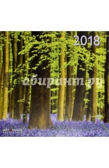 Календарь 2018 Лес 30*30 (95600)Настенные календари<br>Календарь на 2018 год, настенный, ежемесячный.<br>Бумага мелованная, обложка глянцевая.<br>Формат: 300х300 мм.<br>Крепление: скрепка.<br>Количество листов: 12. <br>Верхняя половина - фотография, нижняя половина - календарный месяц.<br>