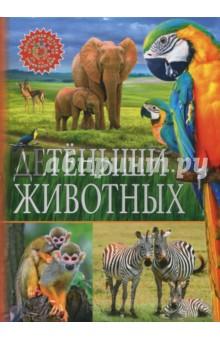 Детёныши животныхЖивотный и растительный мир<br>Представляем новую серию детских энциклопедий, которая точно понравится вам и вашему ребёнку: небольшой удобный формат, краткая подача материала, только самые важные факты и занимательные истории, а также великолепные иллюстрации.<br>Детёныши животных - это книга о маленьких обитателях нашей планеты, детёнышах самых разных животных - от домашней кошки до гигантского слона. На страницах нашей энциклопедии вы узнаете, чем кормить крольчонка, умеет ли тигрёнок плавать, как слоны защищают своих малышей и какого цвета молоко у мамы-бегемотихи, познакомитесь с семьёй барсуков, заботливым папой-пингвином и симпатичным бельком - детёнышем тюленя.<br>Подарите вашему ребёнку все книги серии Популярная детская энциклопедия!<br>