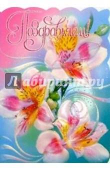 25321/Поздравляем/открытка-вырубка двойная