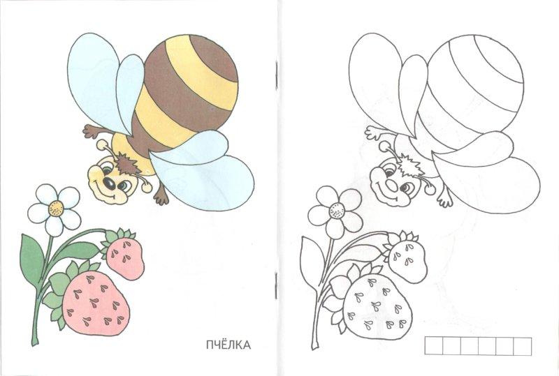 Иллюстрация 1 из 6 для Посмотри-раскрась (черепашка) | Лабиринт - книги. Источник: Лабиринт