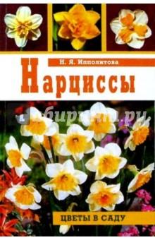 Ипполитова Нина Яковлевна Нарциссы