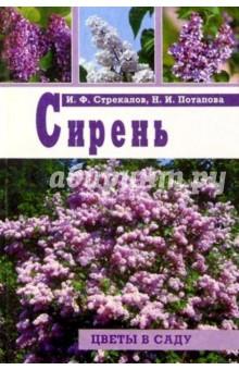 Стрекалов Иван Федорович, Потапова Нина Ивановна Сирень