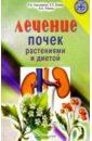 Лечение почек растениями и  ...