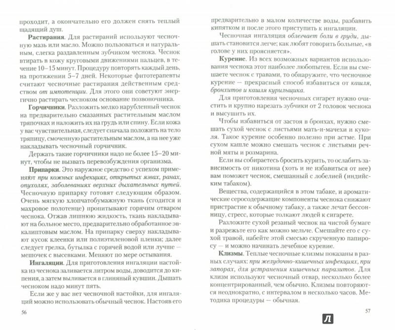 Иллюстрация 1 из 6 для Чеснок. Мифы и реальность - Иван Неумывакин | Лабиринт - книги. Источник: Лабиринт