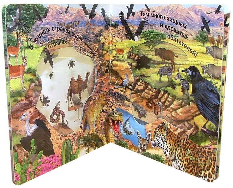 Иллюстрация 1 из 5 для Кто живет в жарких странах. Волшебное окошко-макси | Лабиринт - книги. Источник: Лабиринт