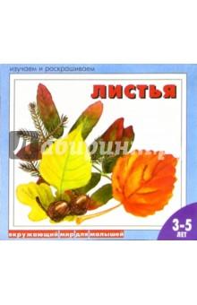 Листья: Раскраска для детей от 3-5 лет