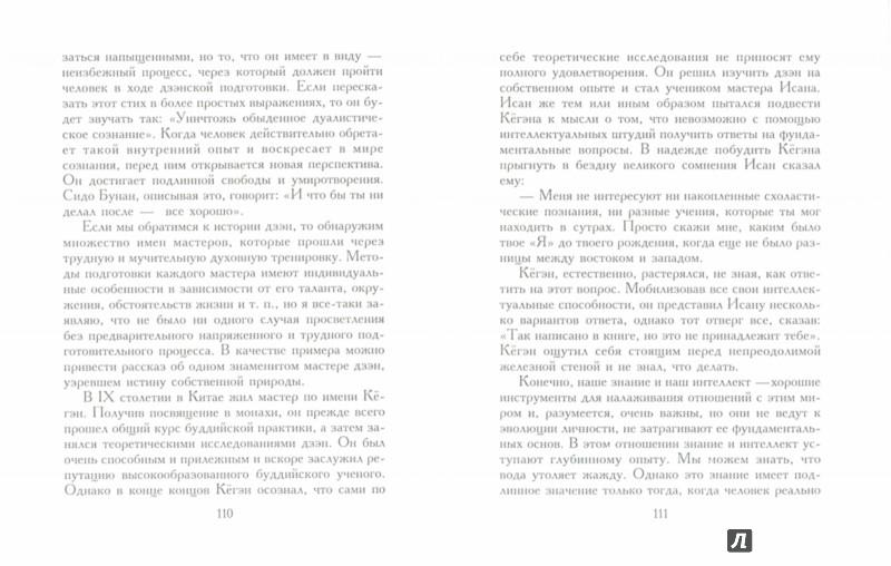 Иллюстрация 1 из 6 для Цветок безмолвствует. Очерки дзен - Дзэнкэй Сибаяма   Лабиринт - книги. Источник: Лабиринт