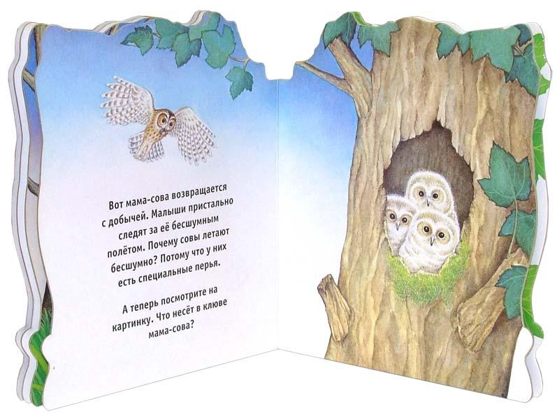 Иллюстрация 1 из 2 для Домик для совы. Домики для зверят   Лабиринт - книги. Источник: Лабиринт