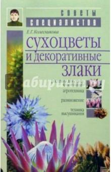 Колесникова Елена Георгиевна Сухоцветы и декоративные злаки
