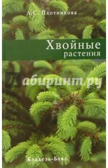 Плотникова Лилиан Суреновна Хвойные растения