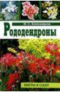 Майя Александрова - Рододендроны обложка книги