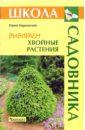 Юрий Марковский - Выбираем хвойные растения обложка книги