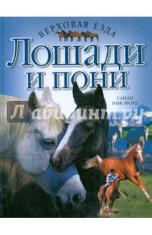 Лошади и пони. Верховая езда - Санди Рансфорд