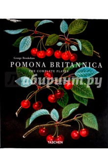 Pomona Britannica - George Brookshaw