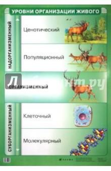 Уровни организации живого - Иван Чернов