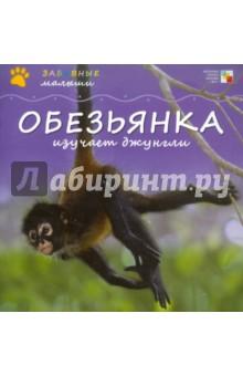 Обезьянка изучает джунгли - Майкл Тейтелбаум