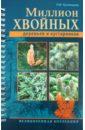 Наталия Кузнецова - Миллион хвойных деревьев и кустарников обложка книги